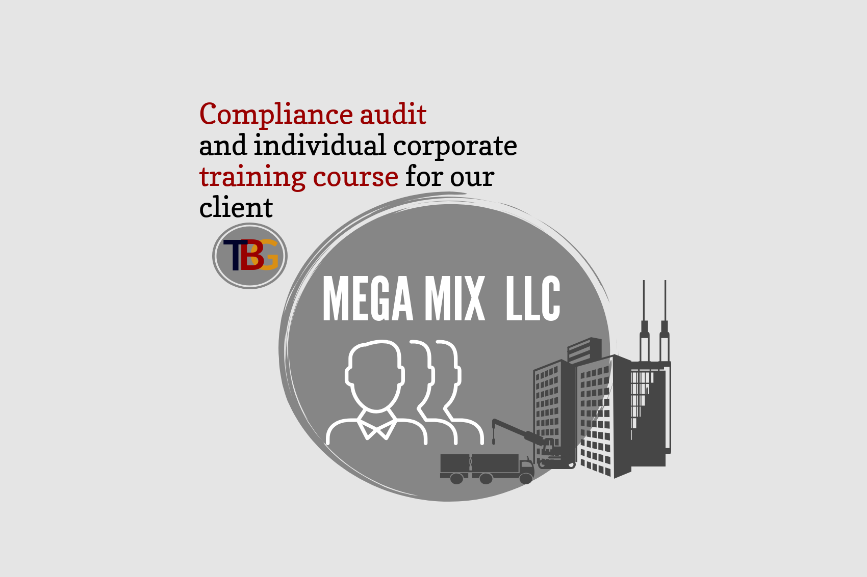 "Compliance audit and individual corporate training course for our client ""Mega Mix"" LLC"